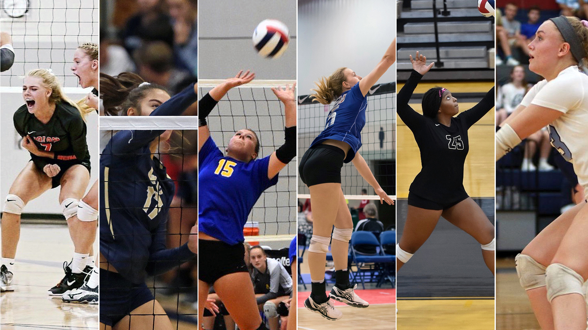 Truman Volleyball Adds Six For 2019 Truman State University Athletics